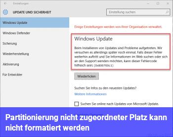 Partitionierung/ nicht zugeordneter Platz kann nicht formatiert werden