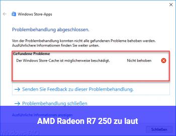 AMD Radeon R7 250 zu laut