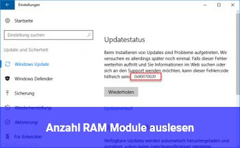 Anzahl RAM Module auslesen?
