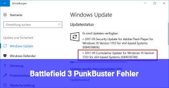 Battlefield 3 PunkBuster Fehler