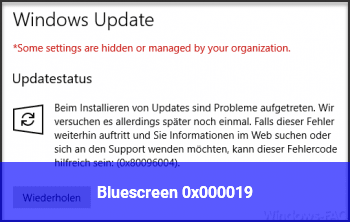 Bluescreen 0x0000..19