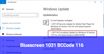 Bluescreen 1031 BCCode 116