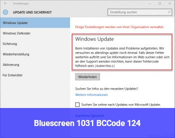 Bluescreen 1031, BCCode 124