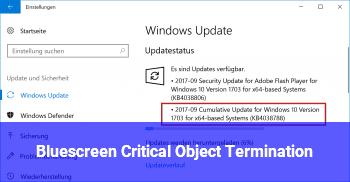 Bluescreen: Critical_Object_Termination