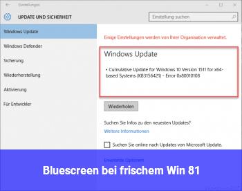 Bluescreen bei frischem Win 8.1