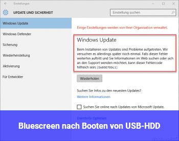 Bluescreen nach Booten von USB-HDD