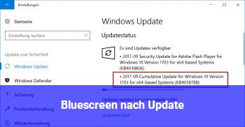 Bluescreen nach Update