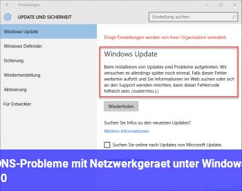 DNS-Probleme mit Netzwerkgerät unter Windows 10