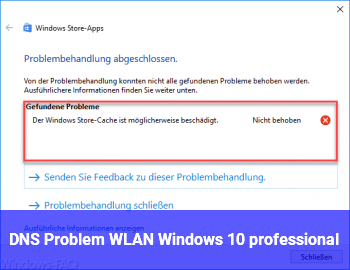 DNS Problem ? WLAN Windows 10 professional