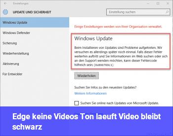 Edge, keine Videos, Ton läuft, Video bleibt schwarz