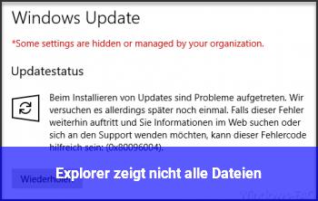 Explorer zeigt nicht alle Dateien