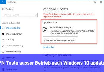 FN Taste ausser Betrieb nach Windows 10 update