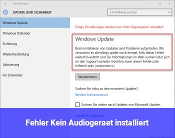 Fehler: Kein Audiogerät installiert - Windows 10 Net