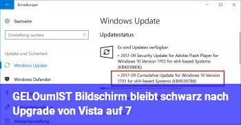 [GELÖST] Bildschirm bleibt schwarz nach Upgrade von Vista auf 7