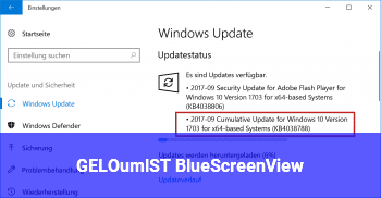 [GELÖST] BlueScreenView