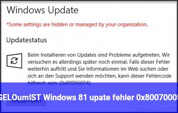 [GELÖST] Windows 8.1 upate fehler 0x80070005