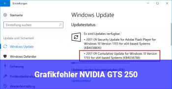 Grafikfehler NVIDIA GTS 250