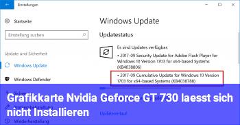 Grafikkarte Nvidia Geforce GT 730 lässt sich nicht Installieren