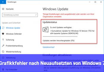 Grafikkfehler nach Neuaufsetzten von Windows 7