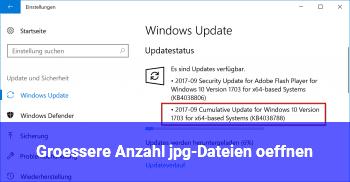 Größere Anzahl jpg-Dateien öffnen