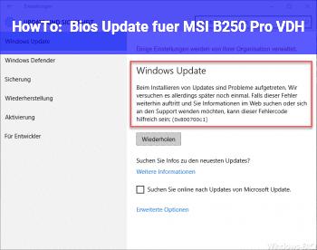 HowTo Bios Update für MSI B250 Pro VDH