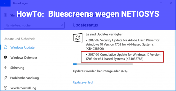 HowTo Bluescreens wegen NETIO.SYS