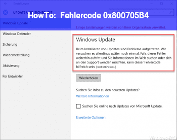 HowTo Fehlercode 0x800705B4