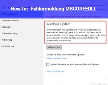 HowTo Fehlermeldung: MSCOREE.DLL