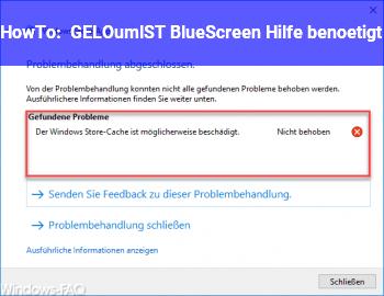 HowTo [GELÖST] BlueScreen Hilfe benötigt