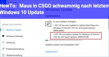HowTo Maus in CS:GO schwammig nach letztem Windows 10 Update