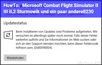 HowTo Microsoft Combat Flight Simulator II & III // IL2 Sturmowik und ein paar andere…