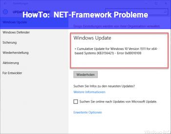 HowTo NET-Framework Probleme