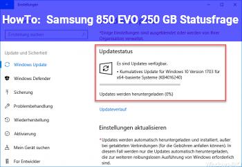 HowTo Samsung 850 EVO 250 GB Statusfrage