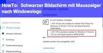 HowTo Schwarzer Bildschirm mit Mauszeiger nach Windowslogo