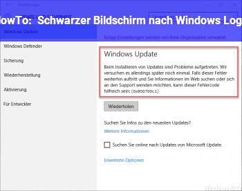 HowTo Schwarzer Bildschirm nach Windows Logo