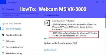 HowTo Webcam MS VX-3000