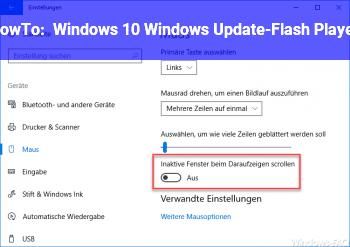 HowTo Windows 10, Windows Update-Flash Player