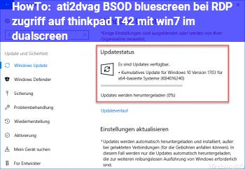HowTo ati2dvag BSOD (bluescreen) bei RDP zugriff auf thinkpad T42 mit win7 im dualscreen