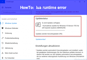 HowTo lua runtime error!