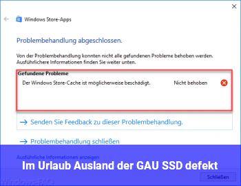 Im Urlaub (Ausland) der GAU: SSD defekt