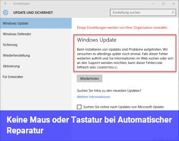 Keine Maus oder Tastatur bei Automatischer Reparatur
