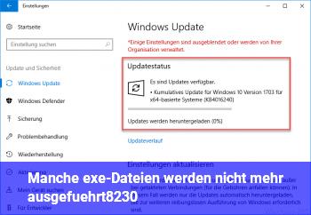 Manche .exe-Dateien werden nicht mehr ausgeführt….