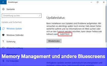 Memory Management und andere Bluescreens