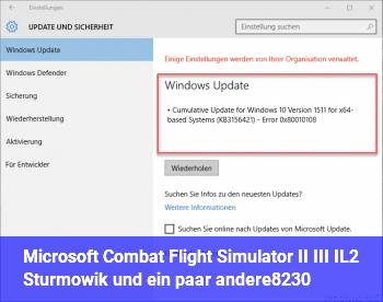 Microsoft Combat Flight Simulator II & III // IL2 Sturmowik und ein paar andere…