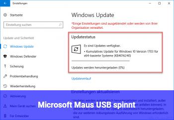 Microsoft Maus (USB) spinnt