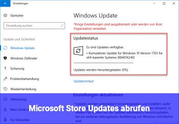Microsoft Store Updates abrufen