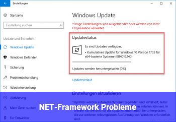 NET-Framework Probleme