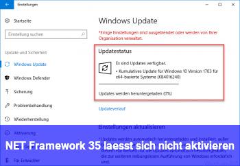 NET Framework 3.5 lässt sich nicht aktivieren