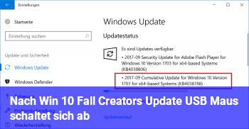 Nach Win 10 Fall Creators Update: USB Maus schaltet sich ab