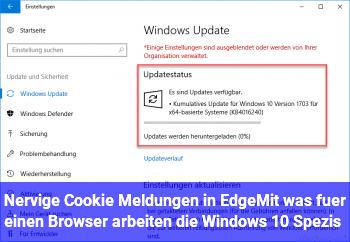 Nervige Cookie Meldungen in Edge/Mit was für einen Browser arbeiten die Windows 10 Spezis?